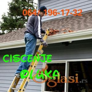 Ciscenje oluka . . . (Gutter Cleaning..)